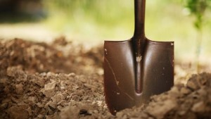digging art